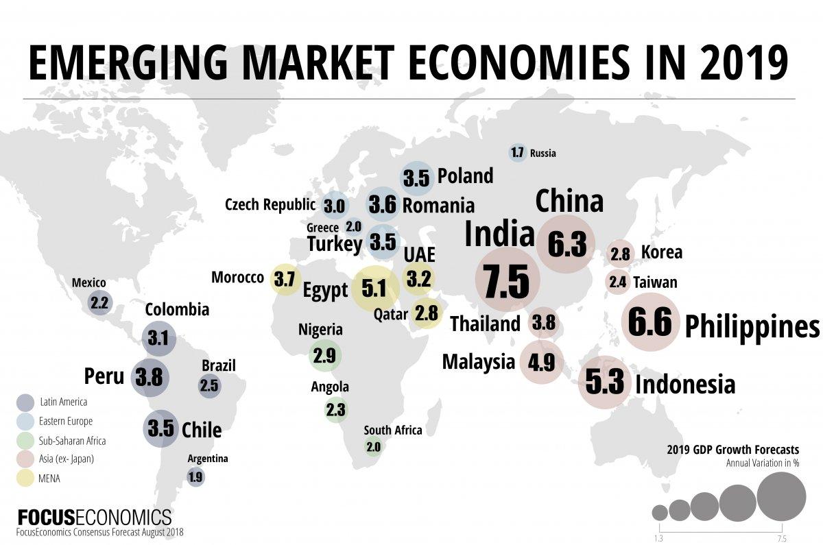 اقتصاد السوق الناشئ اقتصاد الدول النامية الانخارط في الأسواق العالمية الزيادة في سيولة كلٍ من الدين المحلي وسوق الأسهم وحجم التبادل التجاري