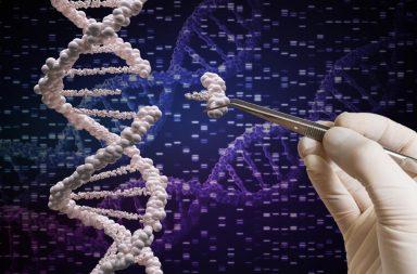 لأول مرة كريسبر يعدل ثلاثة جينومات عند مرضى السرطان - نجح علماء أمريكيون في إجراء تعديل وراثي للأجهزة المناعية لثلاثة مرضى بالسرطان باستخدام تقنية كريسبر
