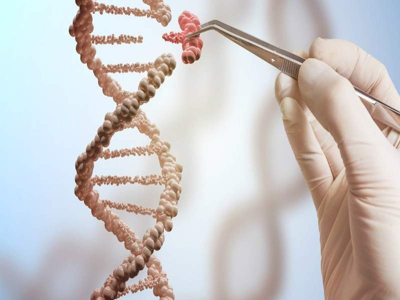 أول أطفال معدلين جينيًا بتقنية كريسبر معرضون للموت حسب هذه الدراسة مخاطر التعديل الجيني للأطفال باستخدام تقنية كريسبر تعديل الجينوم