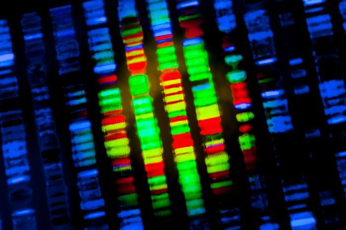 يمكن للعلماء تعلم المزيد عن كيفية ظهور الأمراض من وسم الجينات