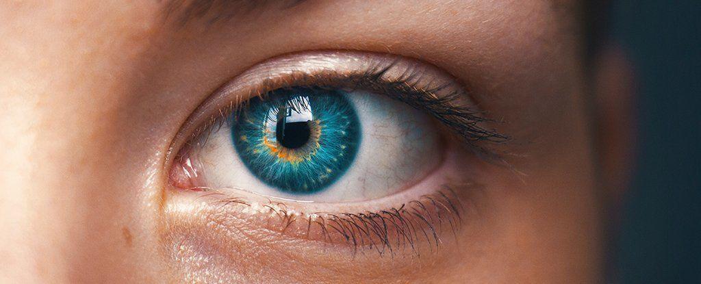 لقد اكتشف العلماء ظاهرة بصرية جديدة تمامًا في العين البشرية