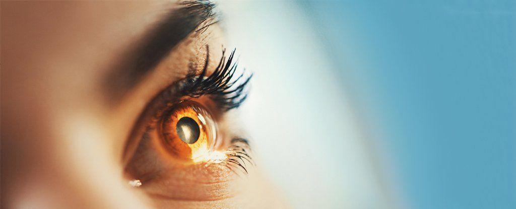 لأول مرة قام العلماء بطباعة ثلاثيّة الأبعاد 3D لجزء هام من العين البشرية