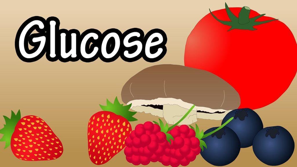 Monosaccharides examples Glucose sugar