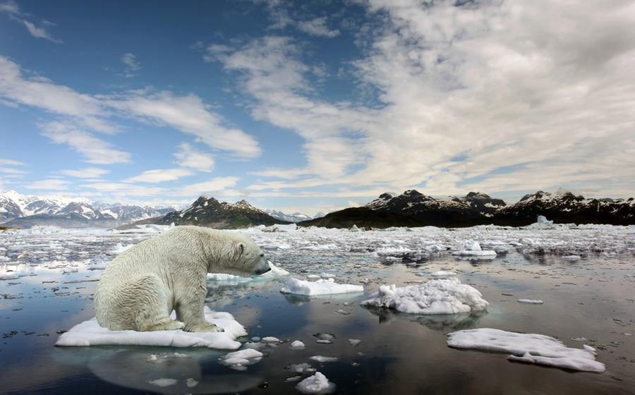 عالم يقدم عرض بـ 10،000 دولاراً لمن ينقض الاحتباس الحراري