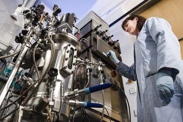 ما هي هندسة العمليات الحيوية نتئاج البحث الهندسة الحيوية على العمليات المتضمنة في الكائنات الحية الخلايا علم الأحياء التحليل الاختباري