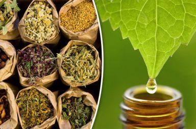 الأدوية العشبية مصدر إلهام جديد لعلاج ارتفاع ضغط الدم العلاجات البديلة المستمدة من الأعشاب الطبية العلاجات العشبية التي قد تعالج ضغط الدم
