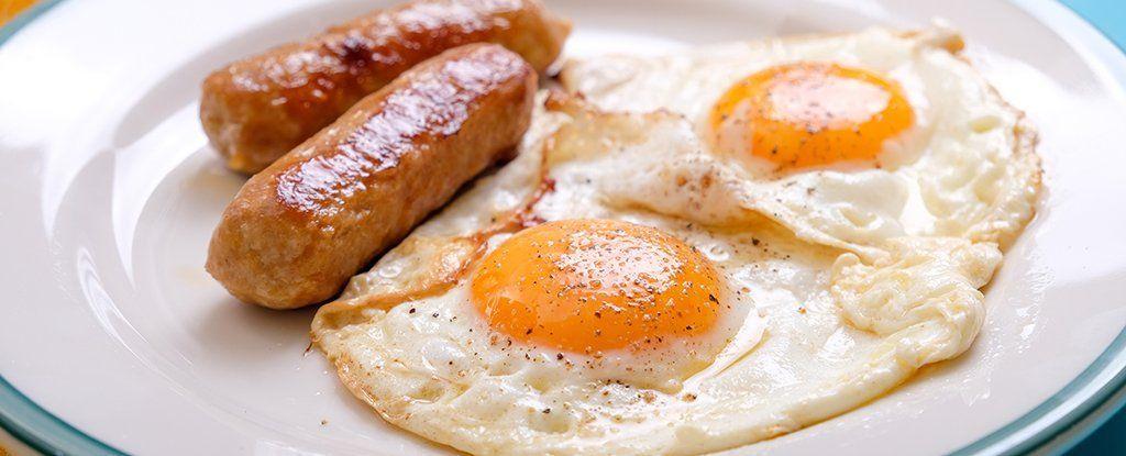 كيف يؤثر الكوليسترول في الطعام على تطور السرطان؟