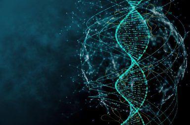 إعادة التركيب الجيني التعافي الذاتي الطبيعي وظائف التركيب الجيني الحمض النووي المادة الورائية الانقسام الاختزالي التكاثر الجنسي