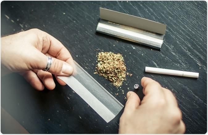 تدخين الماريجوانا يزيد خطر الإصابة بسرطان الخصية - سرطان الخصية والرئة وأورام الفم والعنق والرأس - أضرار تدخين الحشيشة على البالغين