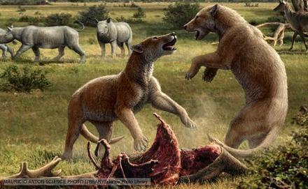 الحقبة المعاصرة او الحديثة ( غزو الثدييات )