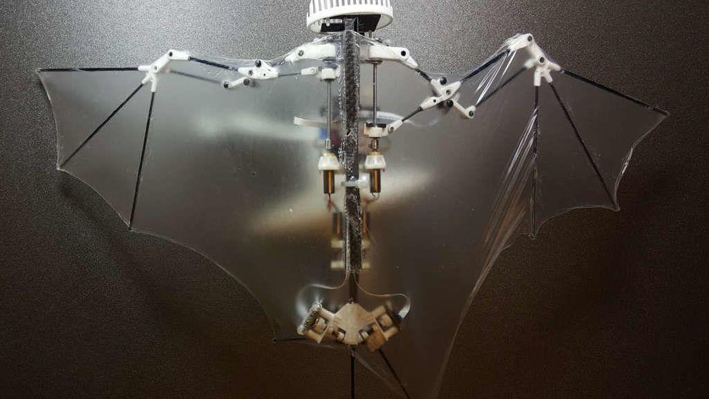 خفاش روبوتي قد يشكل مستقبل الطائرات بدون طيار