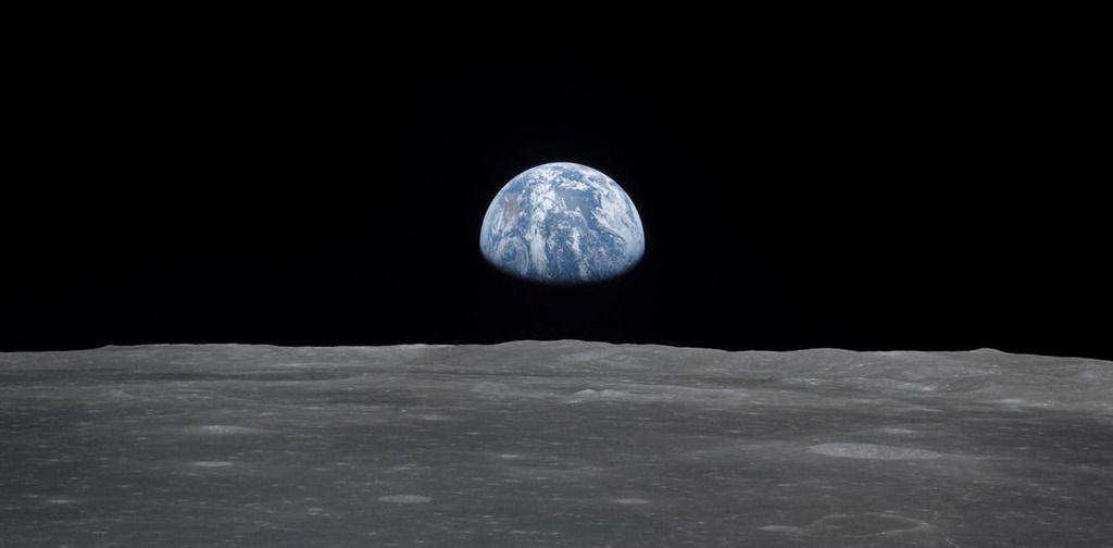 نباتات وحيوانات على القمر.. والسبب: الصين