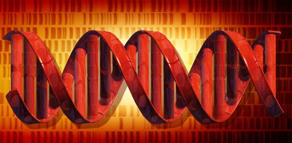 هل يكون الحمض النووي هو وحدة التخزين المقبلة ؟