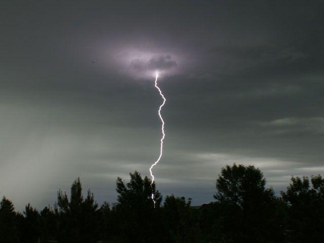 هل أنت في مأمن من البرق إن لم يكن هناك رعد كيف تكون في مأمن خلال عاصفة رعدية العواصف الرعد ضربات البرق المطر الغزير الأشجار