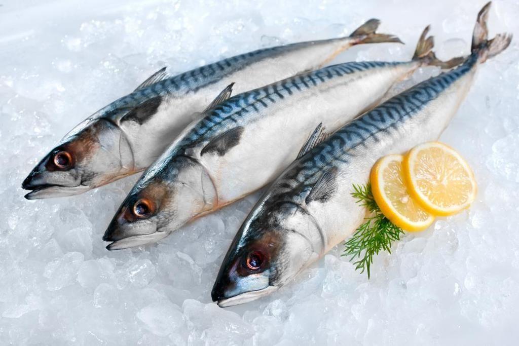 ما هي أفضل أنواع الأسماك من أجل صحة جيدة ؟
