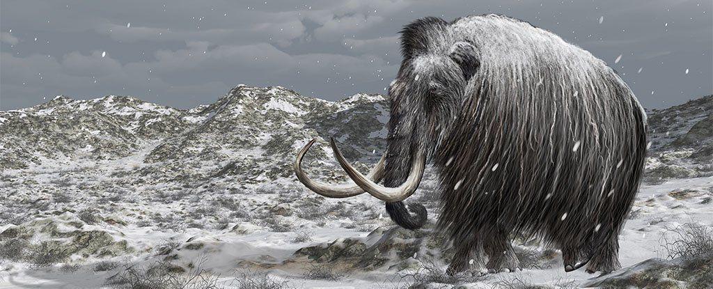 هل يمكن لإحياء الماموث مساعدتنا في وقف انبعاثات القطب الشمالي؟