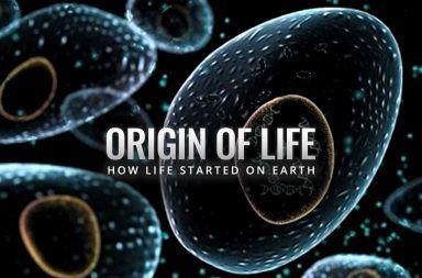 دراسة جديدة تتحدى ما قاله داروين عن بداية الحياة نظرية بداية الحياة الأولى في أعماق المحيطات شديدة الحرارة نظرية داروين حول نشوء الحياة