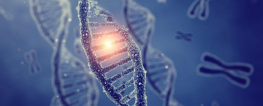 اكتشاف تعديل جيني جديد عند حيوانات تعرضت للإجهاد