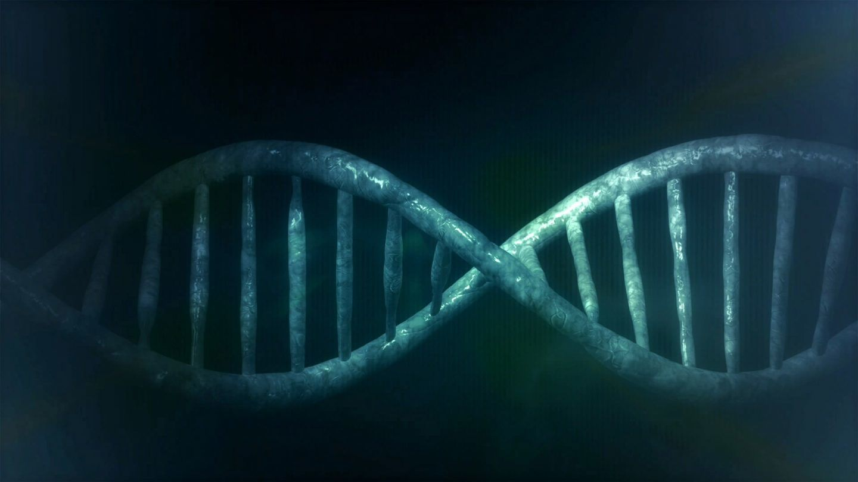 الطفرات الجينية، أسبابها وآليات حدوثها