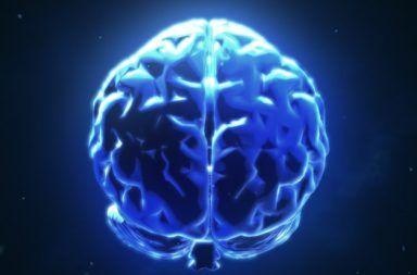 ربط العلماء أدمغة ثلاثة أشخاص، ما مكّنهم من مشاركة أفكارهم Mind-scan-me_1024-384x253