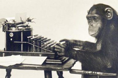 monkey-typing_1024