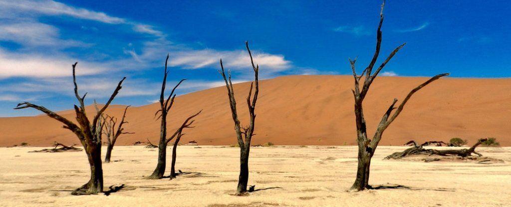 الأنهار الجليدية ناميبيا أندروز الصحراء