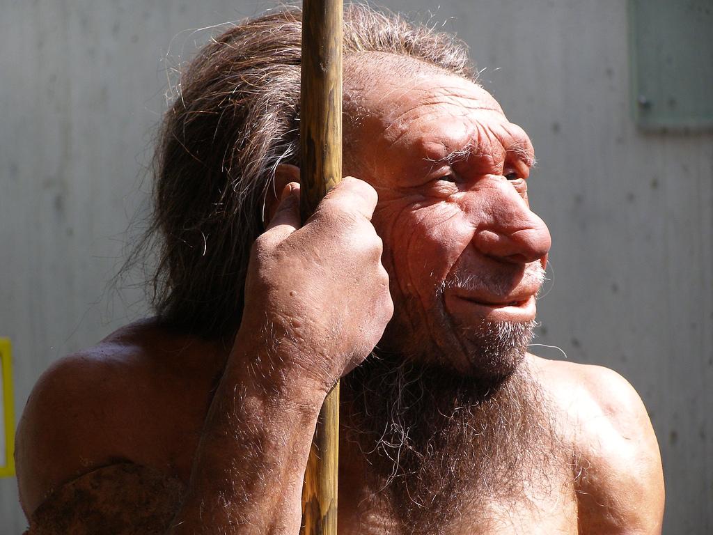 9 أجناس من البشر وُجدت سابقًا لم يبق منها سوانا.. فهل نحن سبب فنائهم؟