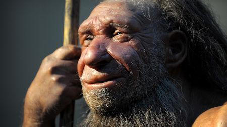 كيف استأنس البشر نفسهم؟ أخيرًا وجدنا الدليل! - كان أسلافنا كائنات متوحشة وبرّية - العيش والعمل مع بعضنا في مجتمعات تتبادل المنفعة