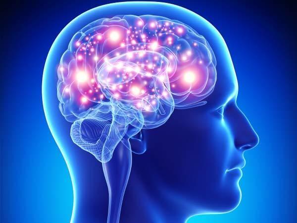 عندما تتعلم يتضخم عقلك بخلايا جديدة ويقتلها بعد ذلك!