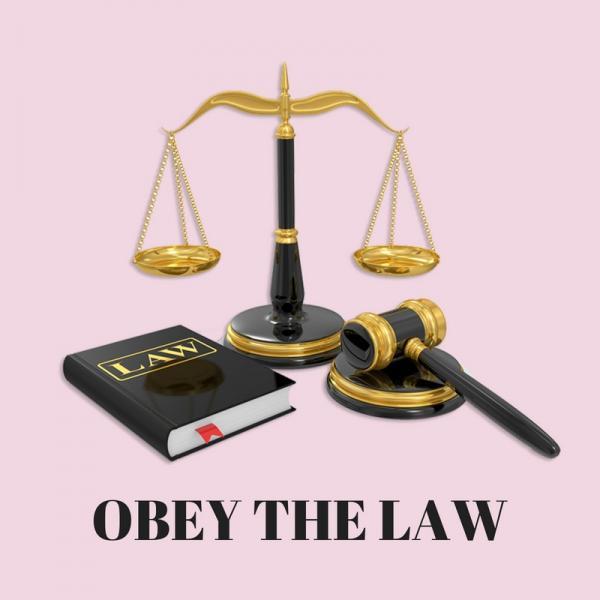 لماذا يطيع الناس القانون - تجنب العقوبات القانونية - السلطة الضرورية التي تطبقها الحكومات على شعوبها - فرض العقوبات على المخالفين
