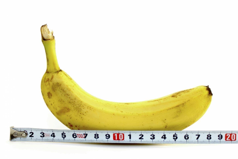 حجم القضيب: أرقام وحقائق بعيدًا عن الخرافات