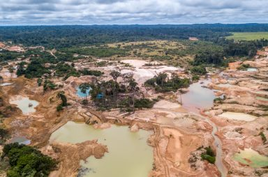أعلن العلماء للتو إحصائيات هذا العقد وهي مفجعة - لجنة التحكيم في المجتمع الإحصائي الملكي - المواضيع الأهم في هذا العقد - غابات الأمازون
