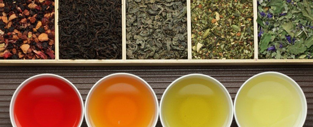 هل يساعد شاي التنحيف حقًا على خسارة الوزن؟