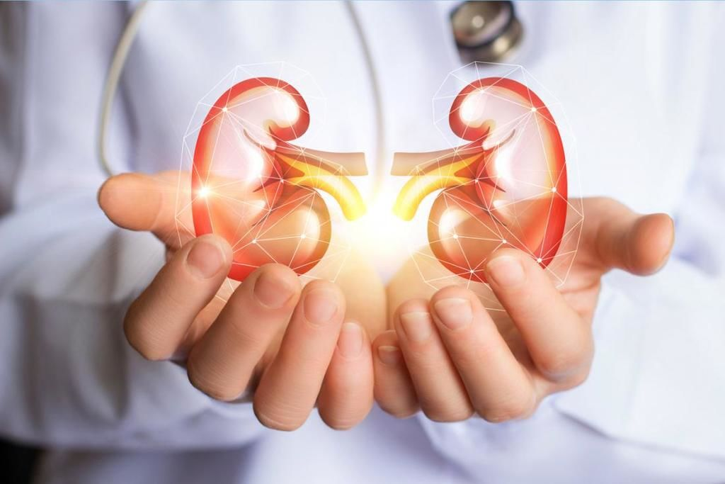 القصور الكلوي الحاد الفشل الكلوي Acute Kidney Injury