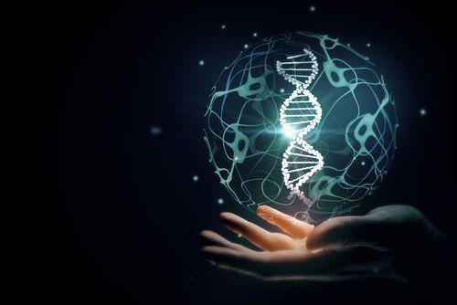 الشيفرة الوراثية الحمض النووي الخلايا