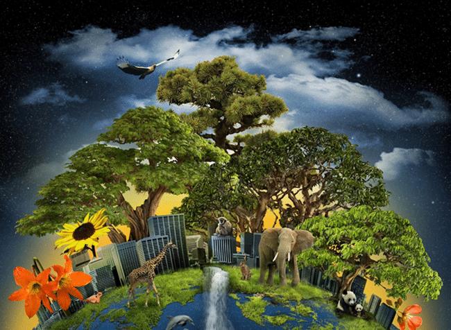 قدّرت أكبر دراسة لأشكال الحياة على الإطلاق أن الأرض موطن لترليون نوع من الأحياء