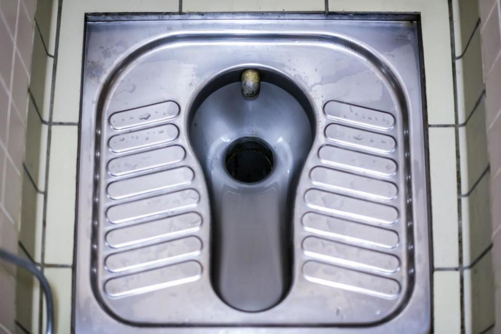 مراحيض القرفصاء منتشرة في كثير من دول العالم