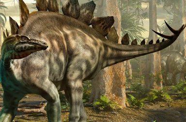 اكتشاف أول أثر للستيغوصور في اسكتلندا - الديناصورات التي استوطنت اسكتلندا منذ 170 مليون سنة - الأحفوريات - الآثار الحفرية
