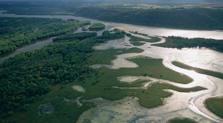 حقائق عن نهر المسيسبي