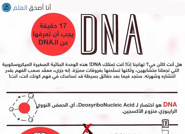 انفوجرافيك: 17 حقيقة يجب أن تعرفها عن الحمض النووي DNA