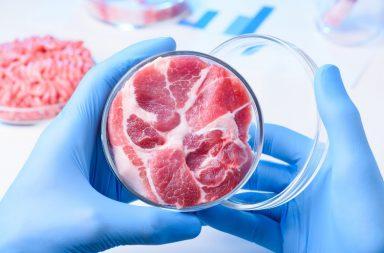 للمرة الأولى على الإطلاق.. زراعة اللحوم في الفضاء محطة الفضاء الدولية إنتاج أول اللحوم الناضجة على الإطلاق في الفضاء المزارع الحيوية