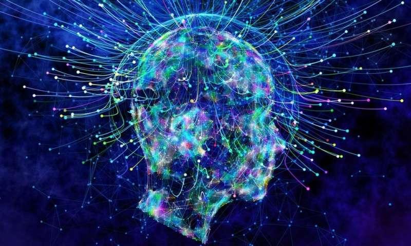 ربما يتوصل العلماء قريبًا إلى تعريف الوعي الأنسجة الرمادية الشبيهة بالهلام المخ عضو شديد التعقيد النشاط الدماغي المشاعر والعواطف والخبرات