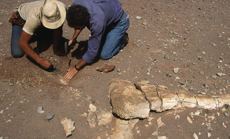 ما أسوأ انقراض حصل في تاريخ الأرض؟